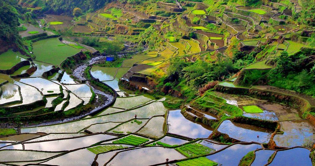 Guide pour un voyage aux Philippines